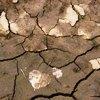 klimavaltozas-es-egeszseg