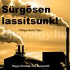 surgosen_lassitsunk